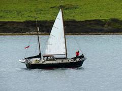 Falmouth Week Boat 3 (dieselgolfer) Tags: falmouth yachts boats