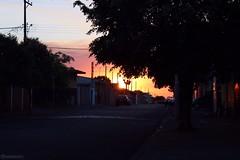 T6 Sunset (DegaspariPhotography) Tags: brazil brasil dia day sol pordosol sun sunset hue br lol kkkk haha eosrebelt6 eost6 eosrebel t6 canoneosrebelt6 canon