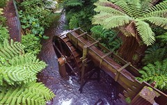 Waterwheel (G.O.Graphic) Tags: artistic nature taranaki beautiful geographic newzealand falls forest waterfall gographic river outdoors scenic trees water waterwheel pukekura park