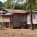 Alak community at Lao Ngam
