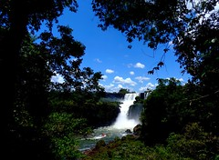 Iguazu - Lower circuit (cansounofargentina) Tags: iguazu argentine cascade bossetti circuit inférieur waterfall cataratas argentina salto provinciademisiones naturescenes flickrtravelaward 1025fav 250v10f
