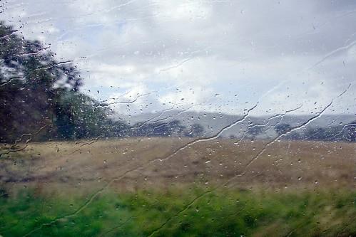 _WCB1937 Rsin shower near Dundee Scotland