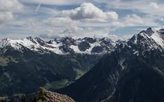 Summer Snow (Netsrak) Tags: berg berge gebirge alpen schnee baum bäume wald natur landschaft kleinwalsertal