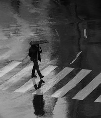 Rainy (CoolMcFlash) Tags: person rain rainy reflection street streetphotography umbrella wet asphalt canon eos 60d vienna austria city citylife regen wetter weather spiegelung strase candid regenschirm nas wien österreich stadt fotografie photography zebrastreifen crosswalk bnw bw black white sw schwarz weis walking gehen highangleview