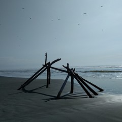 A #driftwoodfort in the making ... #driftwood #structure #seagull #beach #sand #ocean #pacificocean #pacificcoast #westcoast (Heath & the B.L.T. boys) Tags: instagram washington pacificocean ocean beach sand driftwood olympicpeninsula sky pacificnorthwest