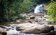 23.06-Sinharaja-Sri-Lanka-canon-1500px-044