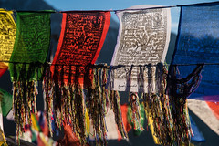 Gocha-la trek in Sikkim, India (David Ducoin) Tags: asia bhuddha buddhism buddhist color cotton dzongri gochala hike himalaya india kangchenjunga lungta nationalpark prayer prayerflag religion sikkim trek gangtok in