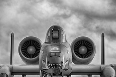 Intimidation (CEGPhotography) Tags: 2017 andrewsairforcebase andrewsairshow airshow aviation a10 a10thunderbolt a10warthog warthog