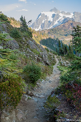 The view is worth the climb (Beth Madigan) Tags: mtbaker landscape hike trail path chainlakesloop mtbakernationalforest mountshuskan mountains washington outside outdoors pnw pacificnorthwest 7dmarkii canon7dmarkii 7d canon24105mm