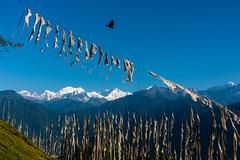 Sikkim, India (David Ducoin) Tags: asia bird himalaya india kangchenjunga landscap landscape mountain prayerflag raven sikkim sky gangtok in