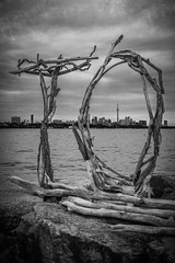T.O. (A Great Capture) Tags: agreatcapture agc wwwagreatcapturecom adjm ash2276 ashleylduffus ald mobilejay jamesmitchell toronto on ontario canada canadian photographer northamerica torontoexplore summer summertime été 2017 to humberbaypark cntower skyline lakeontario