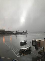The rains came (noel tee) Tags: