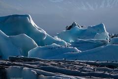 cold magic (bernd obervossbeck) Tags: iceberg eisberg eisberge einformationen gletscher glacier lagune lagoon seeschwalben terns eis ice iceland island türkis cyan aqua schimmern shimmering gleaming berg mountain polarkreis atlantik atlantischerozean atlanticocean fujixt1 berndobervossbeck natur nature landscpe landschaft