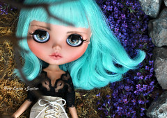 Jupiter <3 (pure_embers) Tags: pure embers blythe doll dolls custom bela bow pureembersjupiter jupiter neo uk laura england girl pretty pureembers photography ufo turquoise mint hair stock