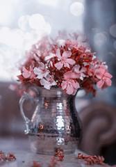 Oleander II (Zara Calista) Tags: oleander vase still life pink peach color grey nikon d750 f14 50mm sigma