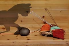 GATTINO GIOCHERELLONE (ADRIANO ART FOR PASSION) Tags: ombra shadow gattino cat gioco gomitolo lana verosimiglianza nikon d90 nikond90 nikkor18200 obiettivo18200 collegno fotogruppo incontro mimesis collettiva