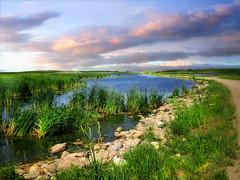 Dakota wetlands 13 (mrbillt6) Tags: landscape rural prairie slough wetlands grass rocks road nature scenic outdoors country countryside northdakota waters