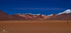 Vastness Peace (Robelier Photoexplorer) Tags: bolivia southamerica altiplano uyuni andes mountains nature travel outdoor sonyalpha colors vastness explore adventure