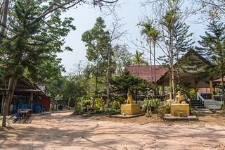 mae fah luang - thailande 39