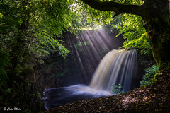 Powerful Dalcairney Falls - 2017-09-09th (colin.mair) Tags: dalcairneyfalls hdr dalcairney falls waterfall sony ilce6000 dalmellington scotland ayrshire hidden dark powerful water river sunray ray trees mist