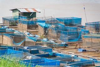 mukdahan - thailande 3