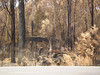 Equipment damage, Melba Highway; Saturday, 28 February, 2009 (Yarra Plenty Regional Library Local History) Tags: fire damage melba highway bushfires dickinson collection victorian machinery black saturday 2009 blacksaturdaybushfires2009 dickinsoncollection firedamage melbahighway victorianbushfires