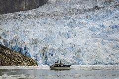 Juneau_Alaska_tracy_9
