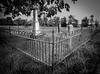 Small Cemetery in Elkins, Arkansas (CJPiazza1) Tags: cementery leica21mmsem leicamonochrome elkins