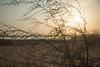 Sunrise (vtrravikumar) Tags: kumar ravi vtr vtrravikumarcom sunrise alain uae morning desert lake zakher
