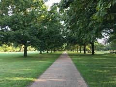 Early morning run at Walpole Park (the_amanda) Tags: walpole park ealing trees path london