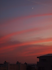Moon and pink clouds (brisa estelar) Tags: sunset blue sky moon clouds red pink buildings landscape city
