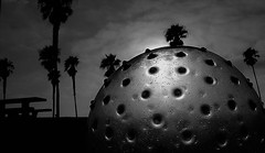 Son of Blob (Rand Luv'n Life) Tags: odc our daily challenge the blob b horror movie science fiction south mission beach san diego california atmospheric palm trees silhouette monster surreal monochrome blackandwhite outdoor
