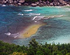 Surrounded (Robyn Hooz) Tags: konnangyuan thailandia tao kohtao reef emerald azzurro abbia sand waves onde man alone tourist snorkel spiaggia
