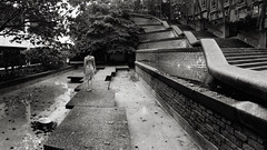 Leading Lines (Smekermann) Tags: architecture modernarchitecture leading lines leadinglines blackwhite black white bw panorama britishcolumbia vancouver yvr quadtone monochrome stairs downtownnewwest brickwork lawcourt urbanlandscape newwestminster