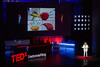 IMG_0473-2 (TEDxSadovoeRing) Tags: tedxsr tedxsadovoering zil
