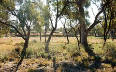 Lot 5, 107 Pooncarie Road, Wentworth NSW