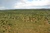 "8H2_23460320 (kofatan (SS Tan) Tan Seow Shee) Tags: ""hualapai"" ""hwal bay nyu wa"" ""hoover dam"" zion ""grand canyon"" ""great salt lake"" usa ""guoano point"" montana ""kolob fillmore utah arizona titon"" ""yellow stone"" kofatan"
