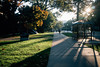 Early Fall Morning [Explored] (davelawrence8) Tags: 2016 annarbor autumn campus light michigan morning shadow sunrise universityofmichigan usa explore explored