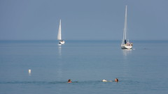Worry (Bert CR) Tags: heatwave hotweather water watersport georgianbay worry greatlakes swimming sailboats dogs nervous