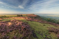 Curbar Edge/Baslow Edge (Twiggy's Photography) Tags: curbar edge baslow derbyshire heather bloom peakdistrict canon 6d 1635mm l series