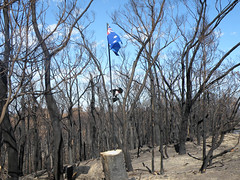 Near Kinglake West; Friday, 20 March 2009 (Yarra Plenty Regional Library Local History) Tags: kinglake west bushfires dickinson collection victorian fire damage black saturday 2009 blacksaturdaybushfires2009 dickinsoncollection firedamage kinglakewest victorianbushfires