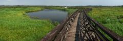 Kładka przez Narew (jacekbia) Tags: europa polska poland podlasie waniewo natura nature przyroda kładka krajobraz landscape outdoor panorama canon 1100d m42