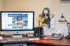 -20170802Staycation2 (Laurie2123) Tags: fujixt2 laurieturnerphotography laurietakespics odc ourdailychallenge home laurie2123 apple imac office