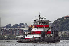 r_170903123_beat0053_a (Mitch Waxman) Tags: 2017greatnorthrivertugboatrace 42ndstreet donjon fireboatjohnjharvey hudsonriver midtown millerslaunch mistert newyorkcity newyorkharbor tugboat workingharborcommittee newyork
