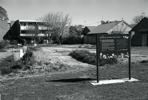 Frame 18.jpg