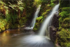 Hidden Twin Falls - Dartmoor (Twogiantscoops) Tags: merge canon filters landscape wellies photomerge blur waterfall riverbank motion effects light southwest luminosity creative chrismarshallsimages country west river 5dmk2 photoshop exposed haunting mirrorlock painterly secret experimenting creativity woodland devon camouflage manfrotto cpfilter lephotography textural 1635 tripod photography art lework levels nature scoopsimages seasons lee countryside britishheartfoundation outback wet areyouanorgandonor dartmoor ndgrads shutterrelease