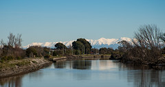 20170822_5344_1D3-135 Looking North west (234/365) (johnstewartnz) Tags: canon canonapsh eos apsh 100canon 1dmarkiii 1d3 1dmark3 28135mm ef28135mmf3556isusm newbrighton avonriver bluesky cloudless onephotoaday oneaday onephotoaday2017 project365 365project 234365 day234 100 unlimitedphotos