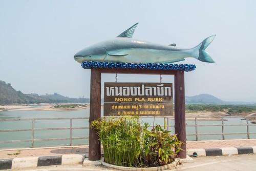 chiang khan - thailande 61