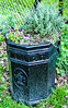 Not BIN done before (Paul Wrights Reserved) Tags: bin flower art old recycle use fence reuse gerden gardening litter trash