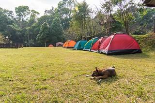 ramkhamhaeng national park - thailande 38